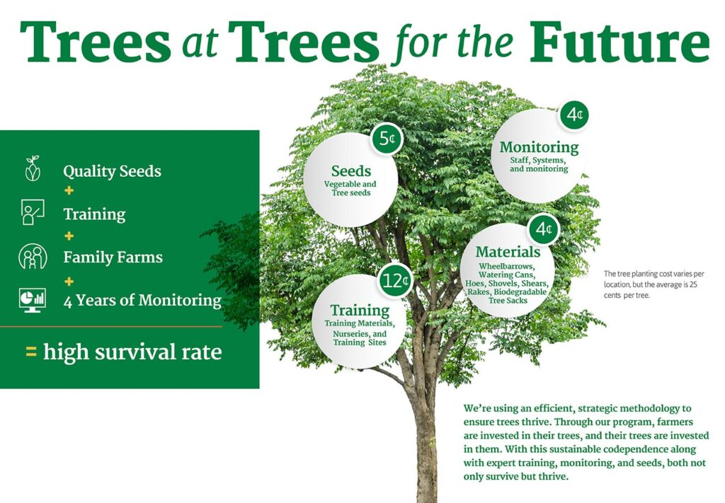 Trees for the Future costs